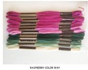 Raspberry colorway
